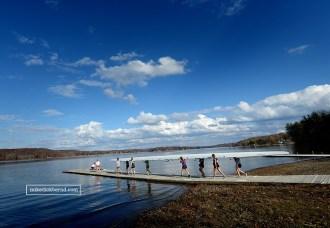IU Rowing