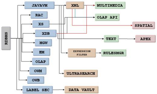Database Component Dependencies Oracle 11.1