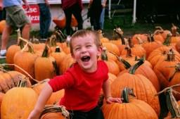One of many images shot in early October using Kodak Ektar 100