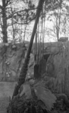 VoskhodBW-4