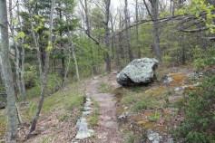 Greenstone Trail on the Blue Ridge Parkway