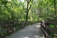 Path at Monticello