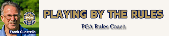 Frank-Guastella-Playing-By-The-Rules-Banner-with-Website-Background_edited-1