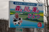 Who can think of Hokkaido without thinking of an acorn riding a cow with a salmon under its arm?