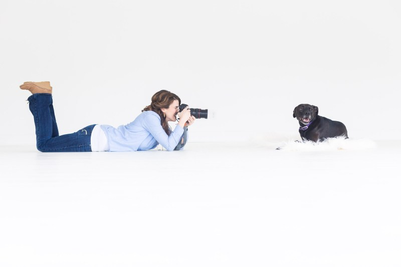 atlanta photographer takes portrait of black lab at white wall studio woodstock