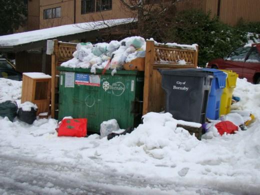 2009 christmas waste