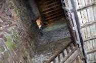 20150521 064 Goodrich Castle