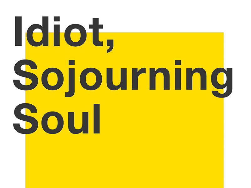 Idiot, Sojourning Soul
