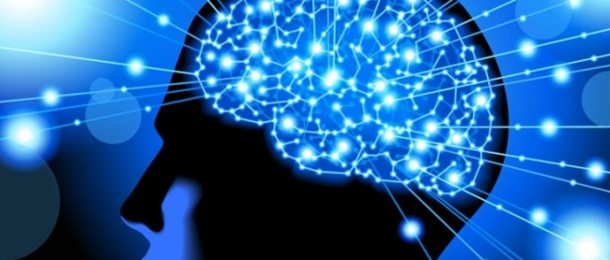 Neuronal Crowding, Your Brain, and Your Diet
