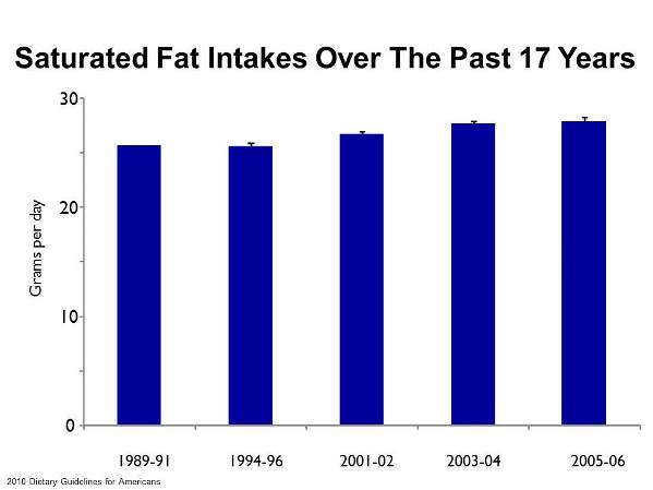Saturated Fat Intake In America