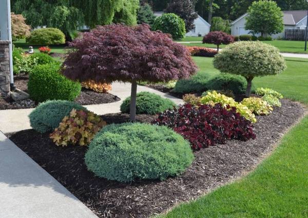 sidewalk garden 23 Landscaping Ideas with Photos.