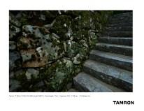 Tamron A037_Ito_4
