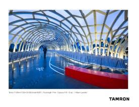 Tamron A037_Lavender_5