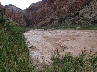 Little Colorado River - Salt Trail