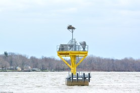 Delaware-River-Pen-Ryn-ospreys-2017-02s