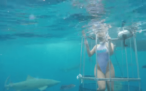 Molly Cavalli is shown being attacked by a lemon shark in a recently uploaded video, but some wonder if the clip is merely a staged stunt. (Photo: YouTube)