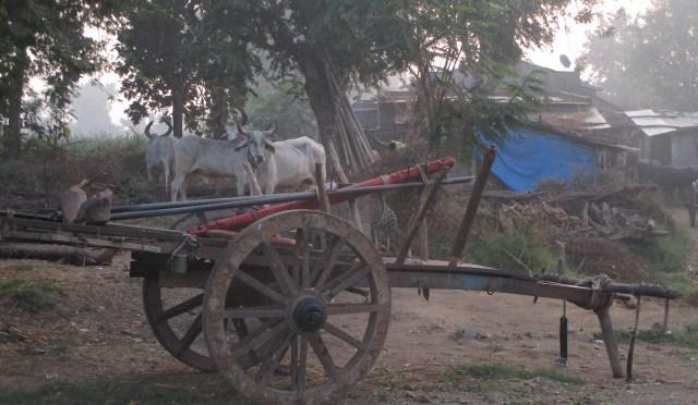 India 2010-2011