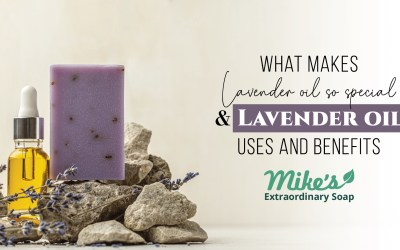 What makes Lavender Oil so special? & Lavender Oil's uses and Benefits.