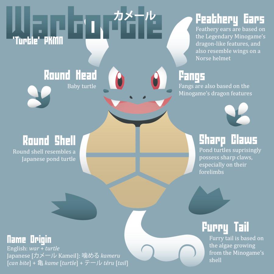 Wartortle Infographic