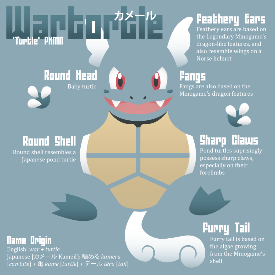 Wartortle Infographic
