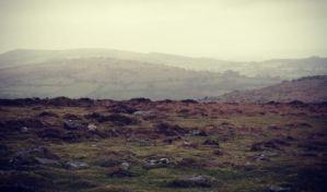 dartmoor misty