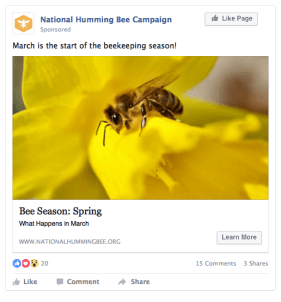 Facebook Ad (News Feed)