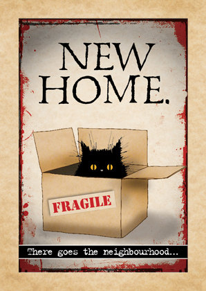 New home (cat in a box)