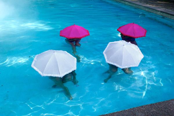 Sunshine Rabbits - Umbrellas in Pool