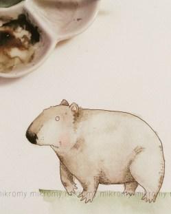 wombatmikro