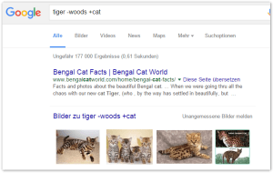 2016-01-11 00_57_02-tiger -woods +cat - Google-Suche