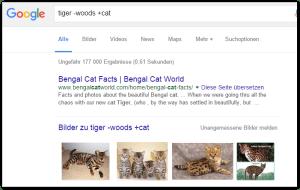 2016-01-11 00_57_02-tiger -woods +cat - Google-Suche