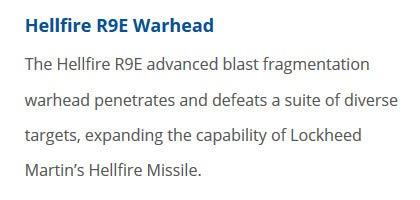 Скріншот з сайту General Dynamics Ordnance and Tactical Systems про бойову частину R9E