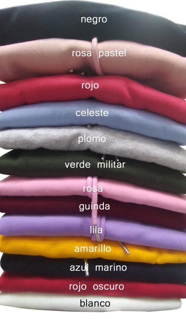 poleras hoodie colores 1
