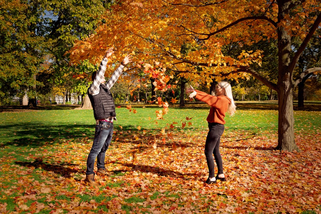 An engagement session for an engaged couple throwing leaves at Cantigny Park in Wheaton in the fall by a wedding photographer Mila Craila Photography