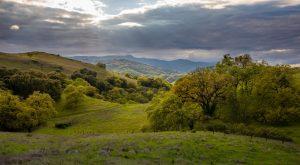 Calero County Park