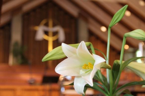 Photo credit: Nancy Ingersoll, http://thephotocottage.net/