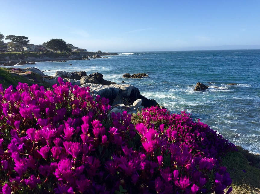 Thankful Thursday – Beach Therapy