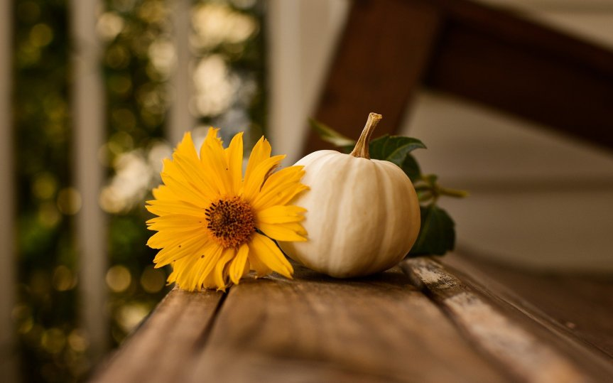 Giving Thanks in An Exceptional Year