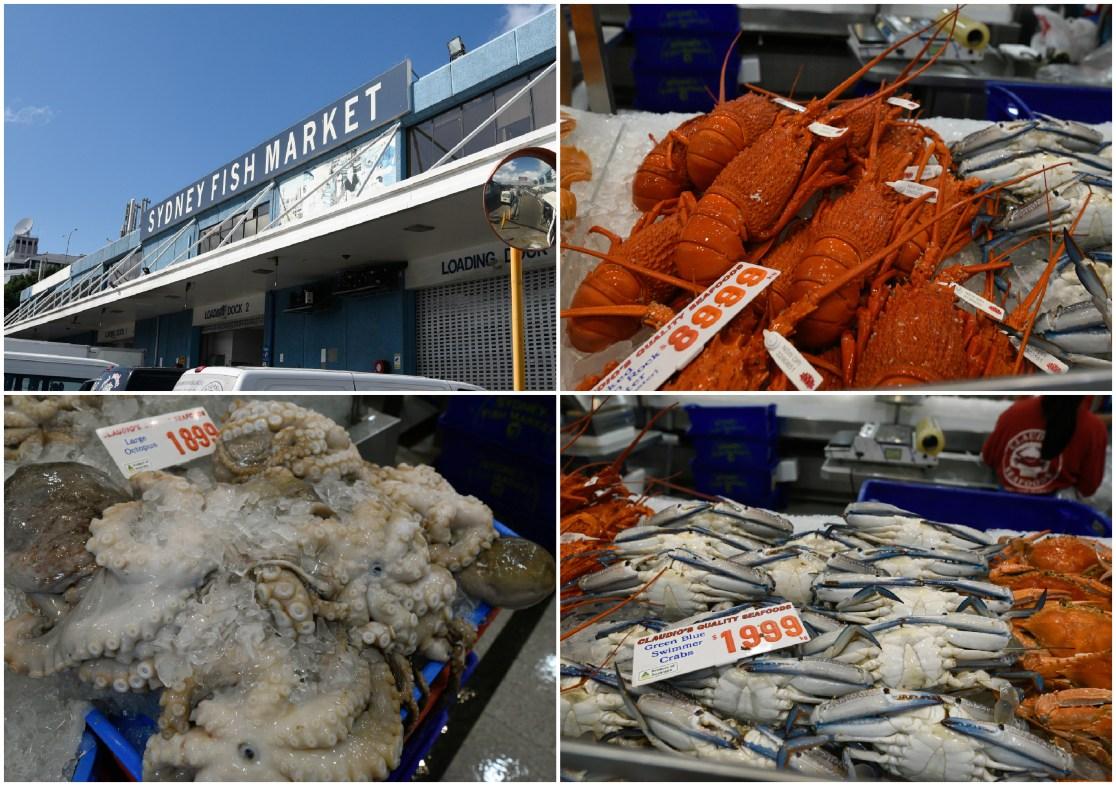 FishMarket1.jpg