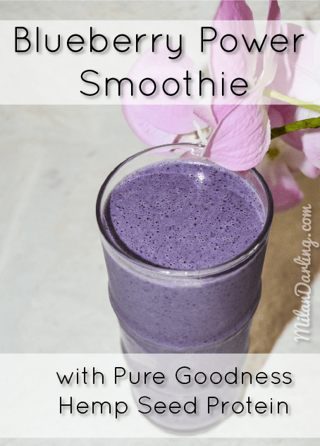 Blueberry Power Smoothie with Pure Goodness Hemp Protein Powder