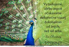 myslienkadna_06