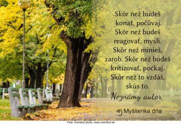 myslienkadna_22