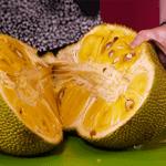 jackfruit-800x600