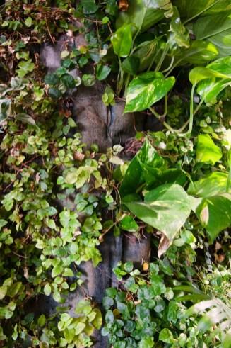 Milano Green Week - Visita Guida Tetti e Pareti Verdi - © ROOFmatters & Ambiente Italia