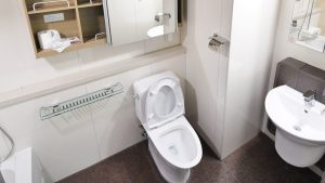 10 Tricky Toilet Troubles in Italy