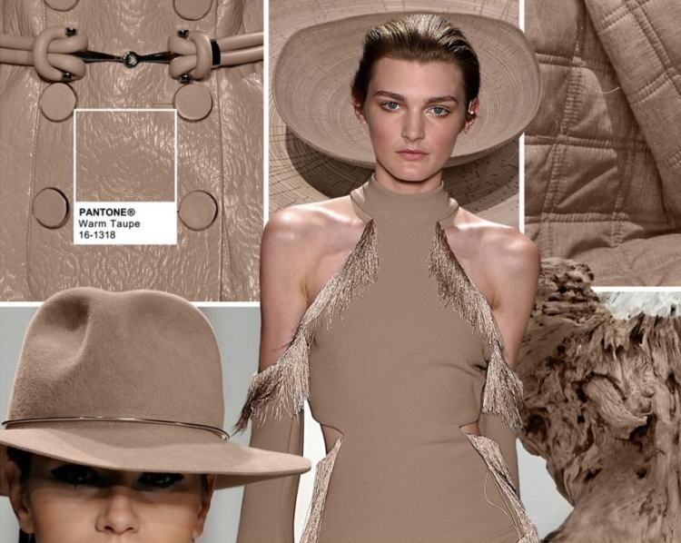 Color panton Fall 2016 color Warm Taupe-milanstyleguide