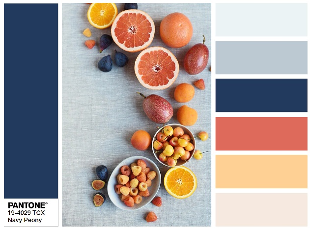PANTONE 19-4029 Navy Peony - color combination