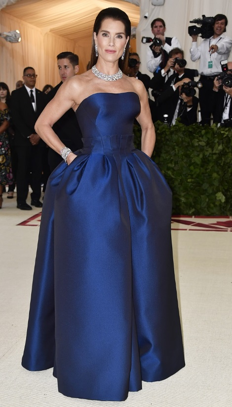 Brooke Shields in Zac Posen