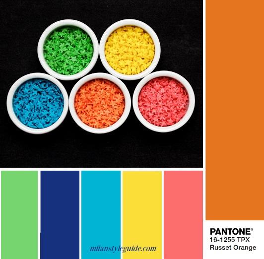 PANTONE 16-1255 Russet Orange – Красновато-оранжевый color combination