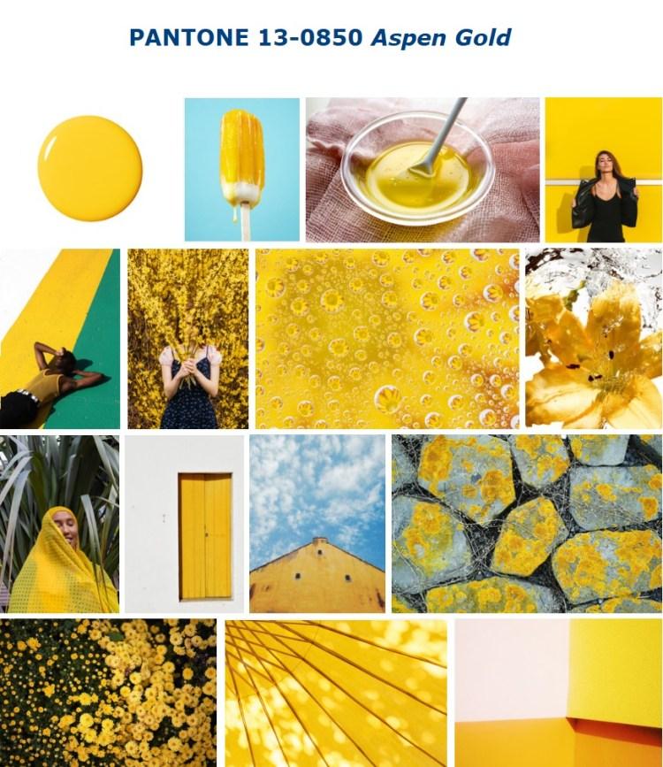 PANTONE 13-0850 Aspen Gold золотая осина